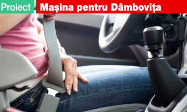 Proiect Dambovita