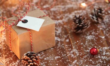 Christmas Costea